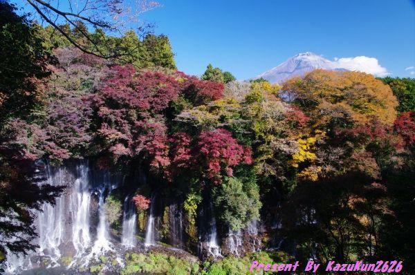 2010-11-21白糸の滝2.jpg