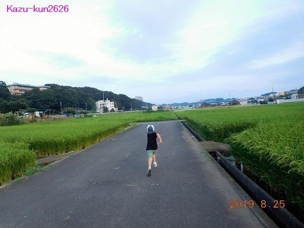 DSCN5989.jpg