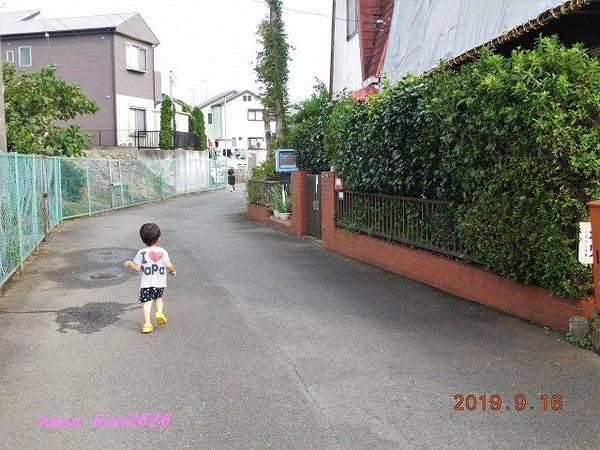 DSCN6202.jpg